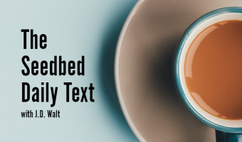Seedbed Daily Devotionals